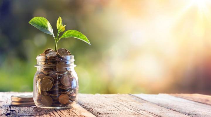 Nachhaltigkeit und Green Finance